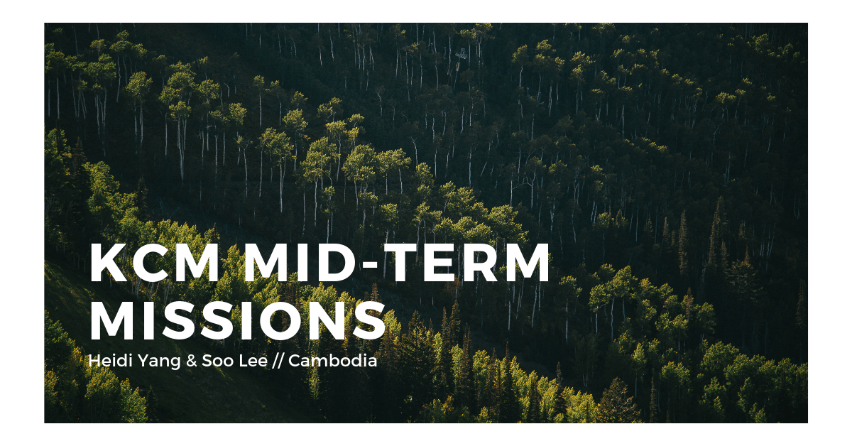 Mid-term Highlight // Heidi Yang & Soo Lee